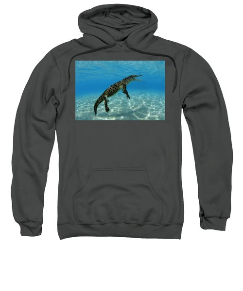 Saltwater Crocodile Sweatshirt by Franco Banfi and Photo Researchers