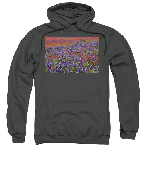 Sand Bluebonnet And Paintbrush Sweatshirt
