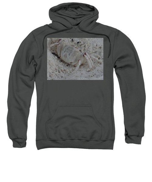 Sand Crab Sweatshirt