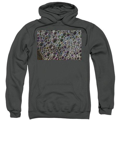 Sea Jewelery Sweatshirt