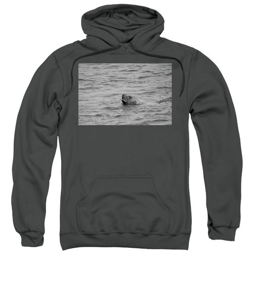 Sea Lion In The Wild Sweatshirt