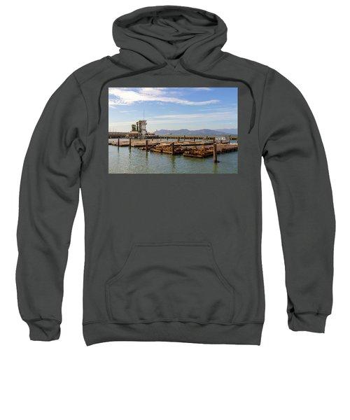 Sea Lions At Pier 39 In San Francisco Sweatshirt