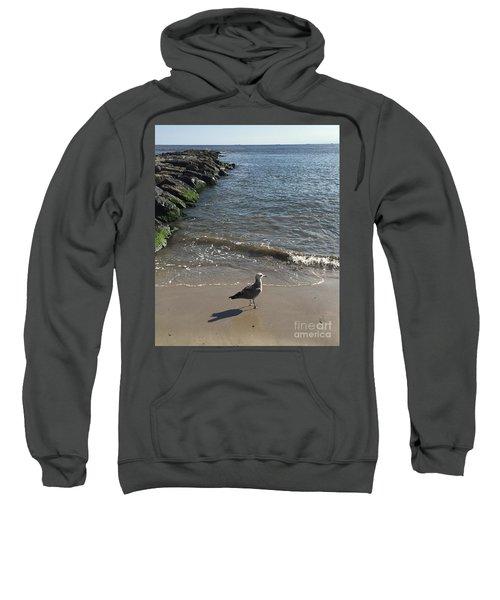 Sea Shadow Sweatshirt