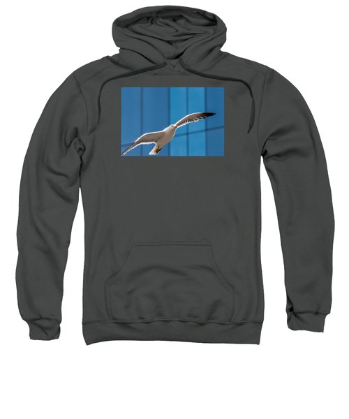 Seabird Flying On The Glass Building Background Sweatshirt