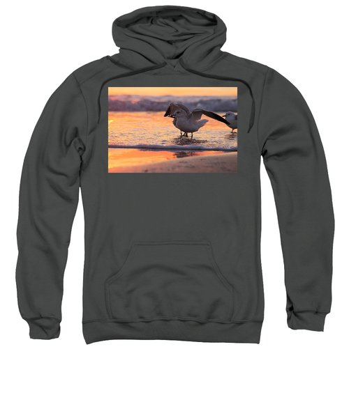 Seagull Stretch At Sunrise Sweatshirt