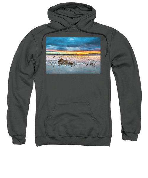 Seagull Sunset Sweatshirt