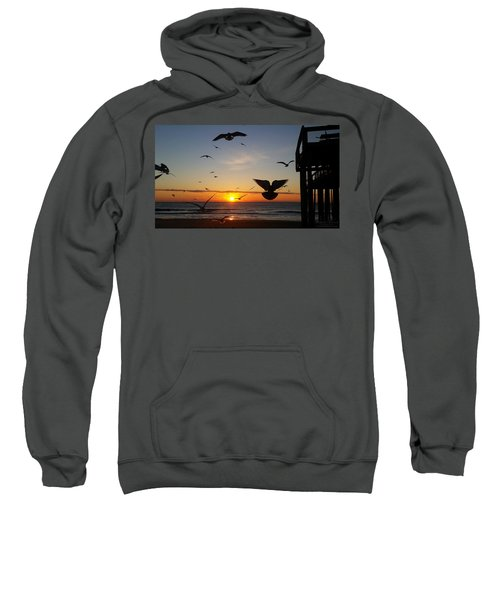 Seagulls At Sunrise Sweatshirt