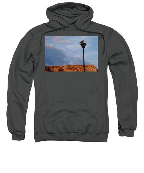 Seagull's Post Sweatshirt