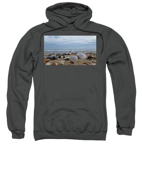 Seashells Seagull Seashore Sweatshirt