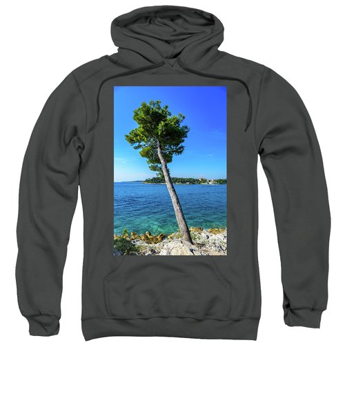 Seaside Leaning Tree In Rovinj, Croatia Sweatshirt