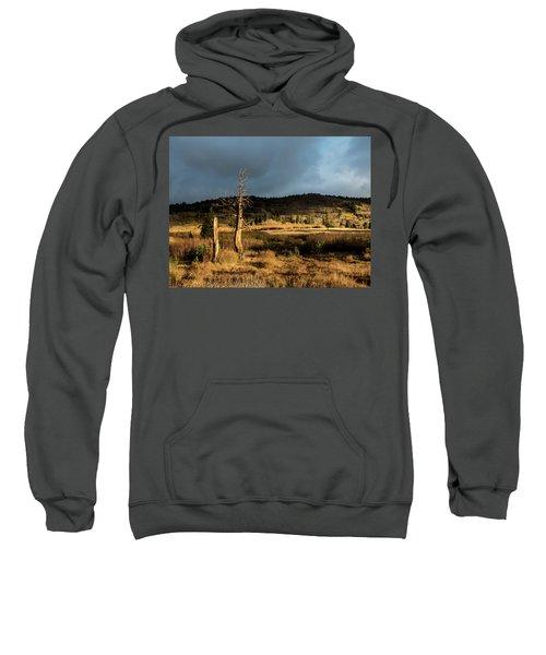 Season Of The Witch Sweatshirt