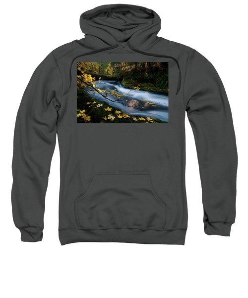 Seasonal Tranquility Sweatshirt