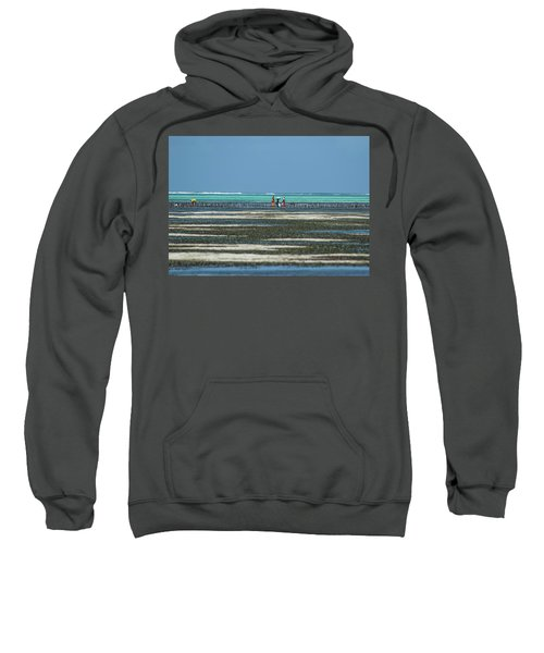Seaweed Colectors Sweatshirt