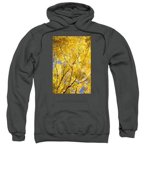 Second Spring Sweatshirt