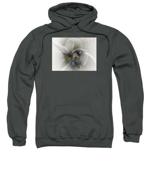 Secret Chambers Sweatshirt