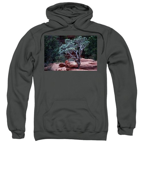 Sedona Tree #3 Sweatshirt