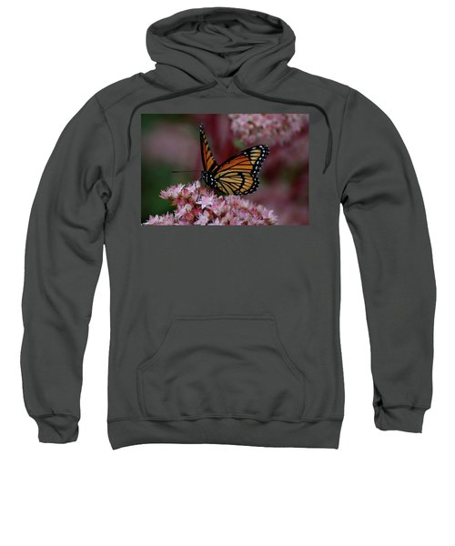 Sedum Butterfly Sweatshirt