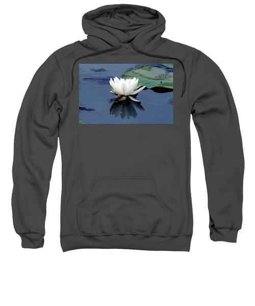 See Below The Surface Sweatshirt