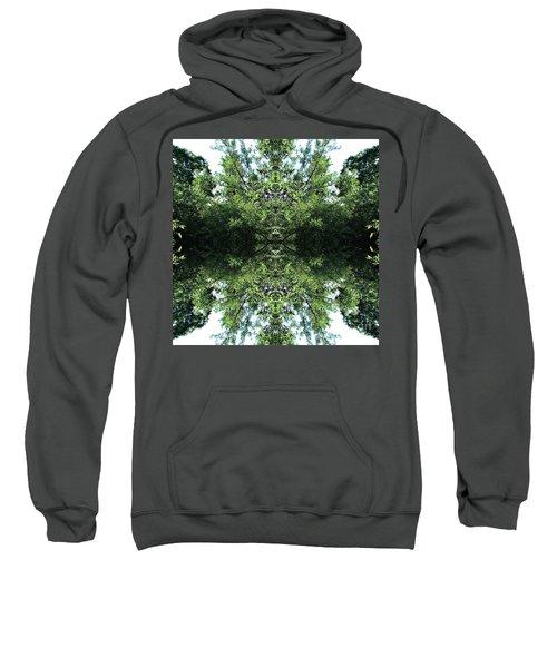Sees All Sweatshirt