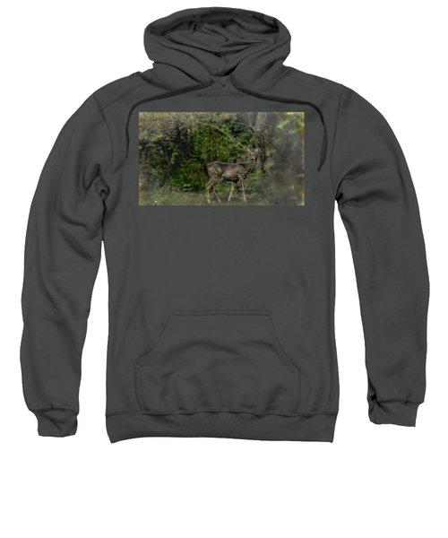 Separated And Diseased Sweatshirt