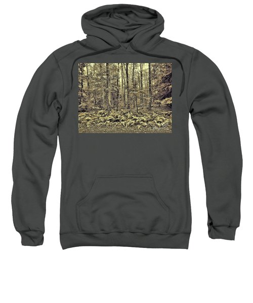 Sepia Landscape Sweatshirt