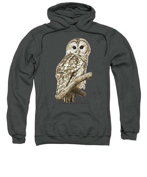 Sepia Owl Sweatshirt by Christina Rollo