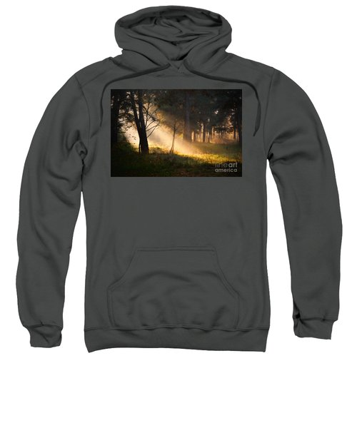 September Impressions Sweatshirt