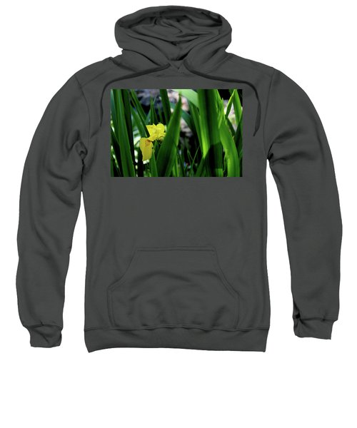 Sweatshirt featuring the photograph Serendipity by Hanne Lore Koehler