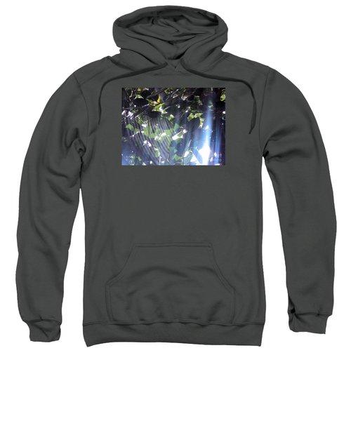 Shadow Threads Sweatshirt