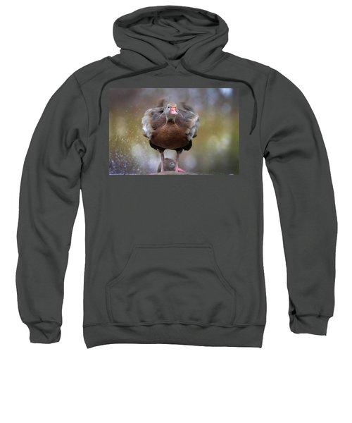 Shake Your Booty Sweatshirt