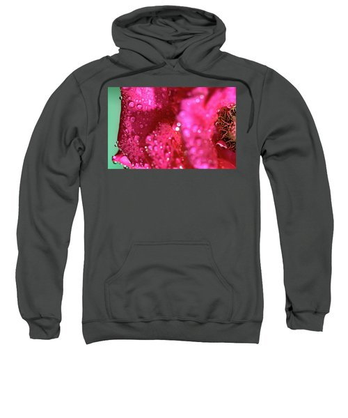 Sharp Wet Rose Sweatshirt