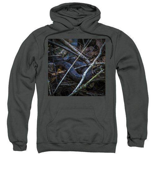 Shedding Time Sweatshirt