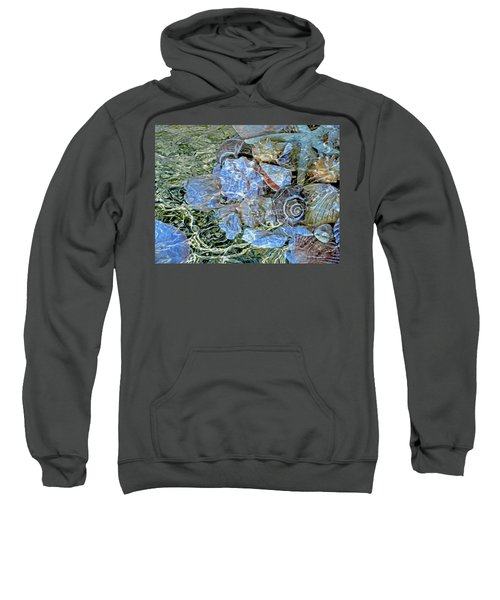 Shells Underwater 20 Sweatshirt