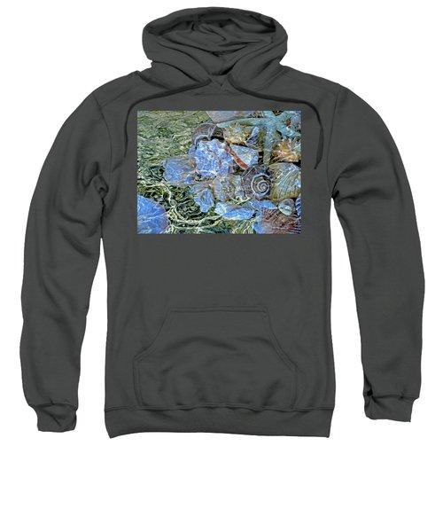 Shells Underwater 20 Sweatshirt