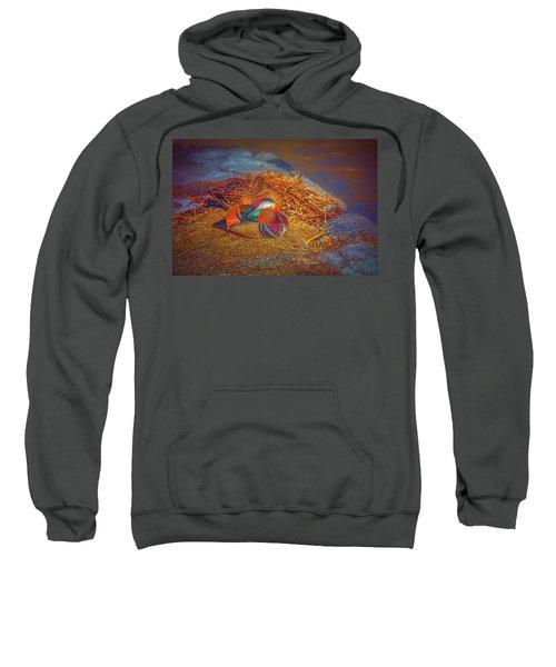 Sheltered #h4 Sweatshirt
