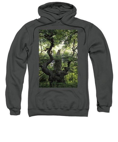 Sherwood Forest Sweatshirt