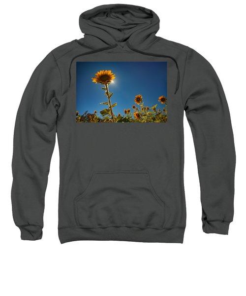 Shining High Sweatshirt