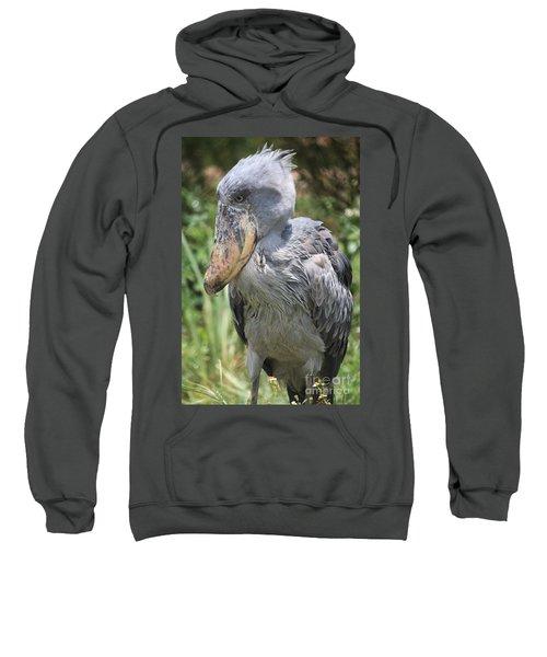 Shoebill Stork Sweatshirt