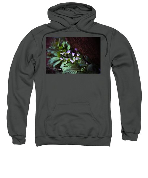 Shooting Stars Sweatshirt