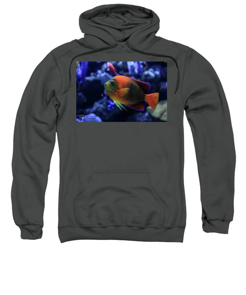 Showoff Sweatshirt