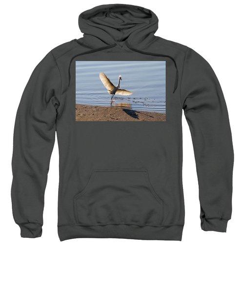 Showy Snowy Sweatshirt