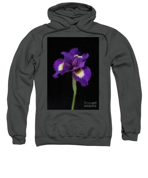 Siberian Iris Sweatshirt