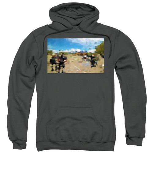 What Do You See? Sweatshirt
