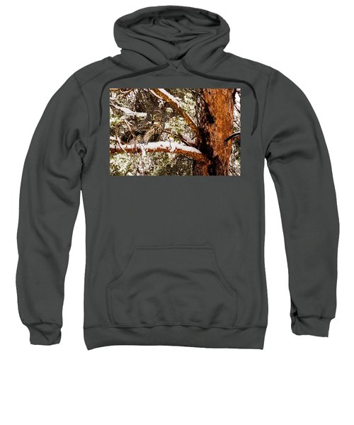 Silent Hunter Sweatshirt