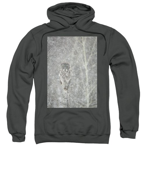 Silent Snowfall Portrait II Sweatshirt