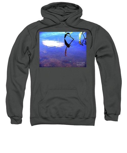Silhouette Aquatic Fish Sweatshirt
