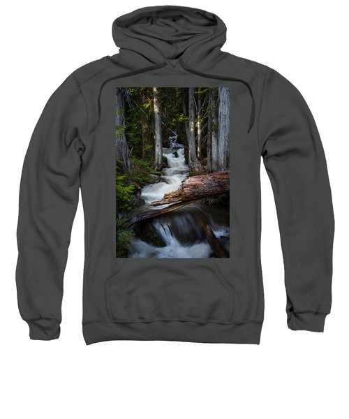 Silver Falls Sweatshirt