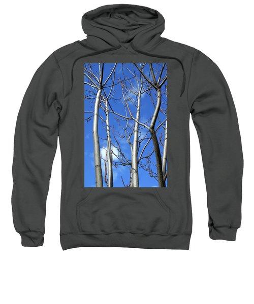 Silver Smooth Sweatshirt