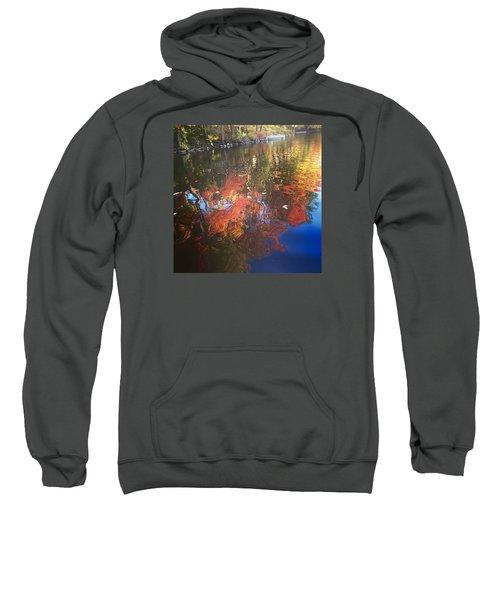 Simply Sensations Seasonal Swirls Sweatshirt