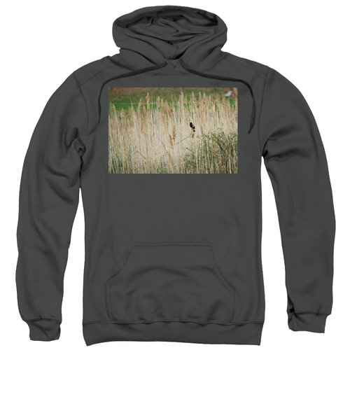 Sweatshirt featuring the photograph Sing For Spring by Bill Wakeley